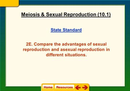 State Standard 2E. Compare the advantages of sexual reproduction and asexual reproduction in different situations. Meiosis & Sexual Reproduction (10.1)