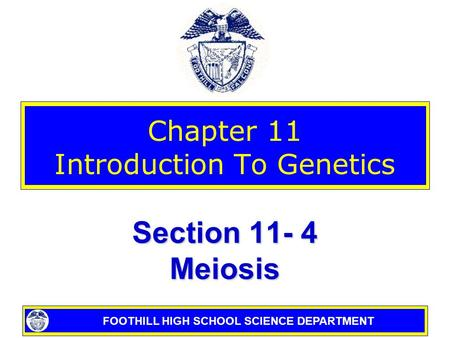 FOOTHILL HIGH SCHOOL SCIENCE DEPARTMENT Chapter 11 Introduction To Genetics Section 11- 4 Meiosis.