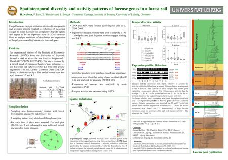 Spatiotemporal diversity and activity patterns of laccase genes in a forest soil H. Kellner, P. Luis, B. Zimdars and F. Buscot - Terrestrial Ecology, Institute.