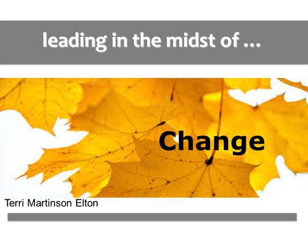 Leading in the midst of … Change Terri Martinson Elton.