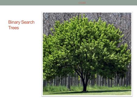 Binary Search Trees CS340. Overview of a Binary Search Tree A set of nodes T is a binary search tree if either of the following is true T is empty If.
