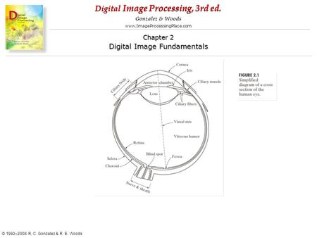 Digital Image Processing, 3rd ed. www.ImageProcessingPlace.com © 1992–2008 R. C. Gonzalez & R. E. Woods Gonzalez & Woods Chapter 2 Digital Image Fundamentals.