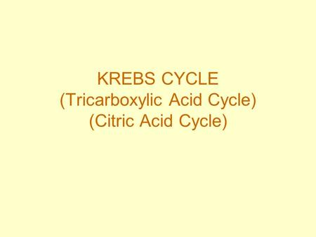 KREBS CYCLE (Tricarboxylic Acid Cycle) (Citric Acid Cycle)