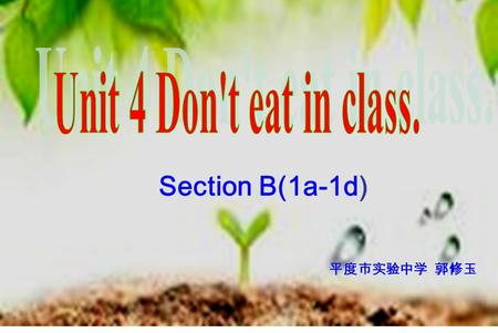 Section B(1a-1d) 平度市实验中学 郭修玉. That's me! No rules, no standards. ( 没有规矩不成方圆 ) The rules are good for us. We must follow (遵守) the school rules. Play a.