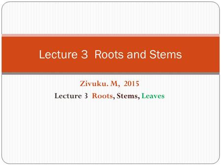 Zivuku. M, 2015 Lecture 3 Roots, Stems, Leaves Lecture 3 Roots and Stems.