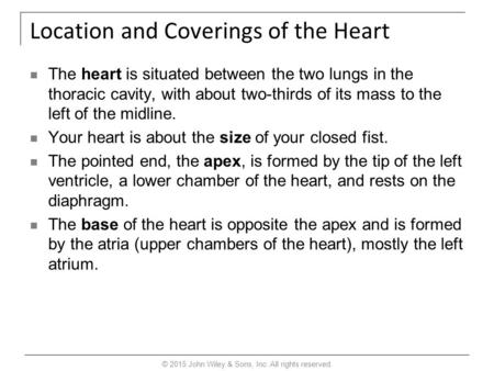 Location and Coverings of the Heart The heart is situated between the two lungs in the thoracic cavity, with about two-thirds of its mass to the left of.