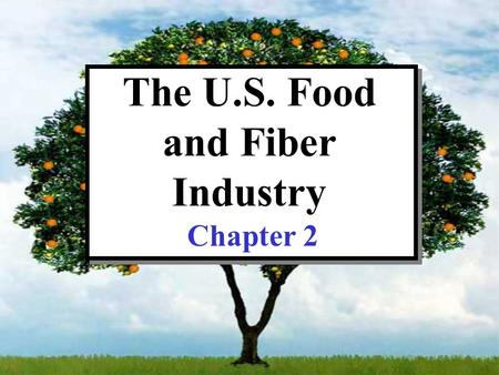 The U.S. Food and Fiber Industry Chapter 2. CHAPTER 2: TOPICS OF DISCUSSION Indices and nominal versus real values What is the food and fiber Industry?