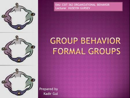Prepared by Kadir Gul EMU CSIT 362 ORGANIZATIONAL BEHAVIOR Lecturer HUSEYIN GURSEV.