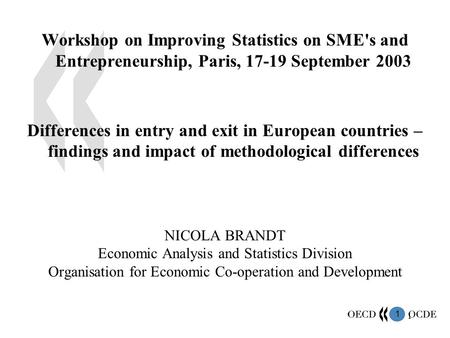 1 1 Workshop on Improving Statistics on SME's and Entrepreneurship, Paris, 17-19 September 2003 Differences in entry and exit in European countries – findings.