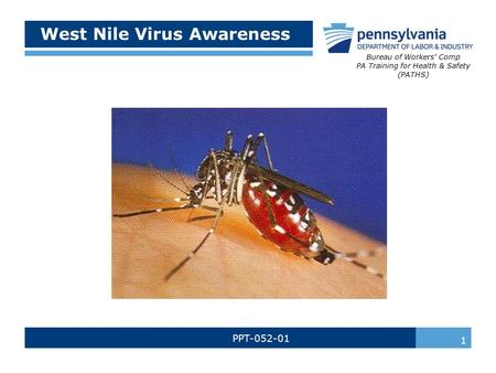 West Nile Virus Awareness PPT-052-01 Bureau of Workers' Comp PA Training for Health & Safety (PATHS) 1.