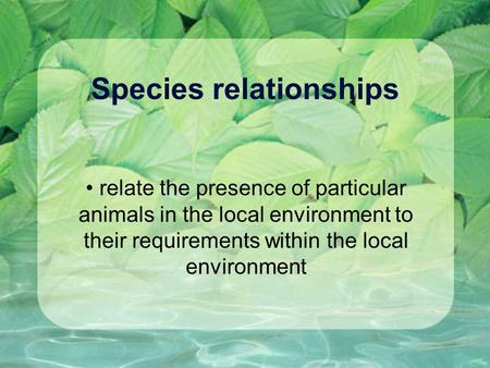 Species relationships relate the presence of particular animals in the local environment to their requirements within the local environment.