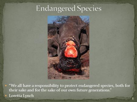 """We all have a responsibility to protect endangered species, both for their sake and for the sake of our own future generations."" Loretta Lynch 1."