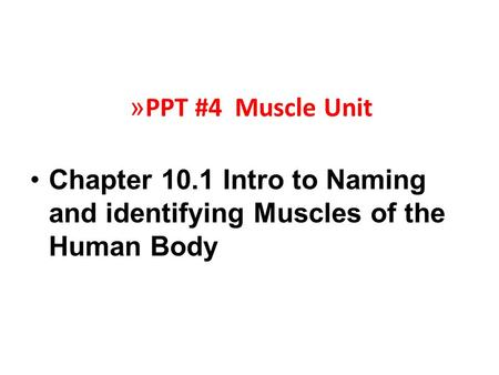 » PPT #4 Muscle Unit Chapter 10.1 Intro to Naming and identifying Muscles of the Human Body.