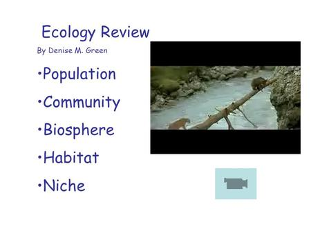 Ecology Review By Denise M. Green Population Community Biosphere Habitat Niche.