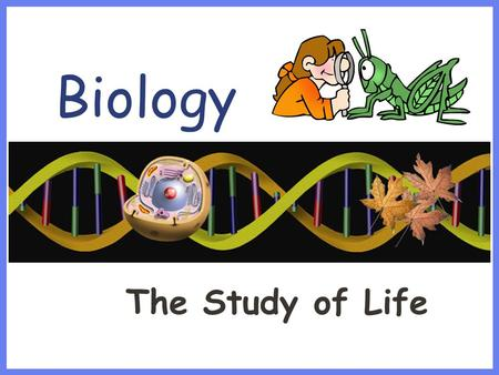 Biology The Study of Life. Characteristics of Living Things Made up of one or more Cells Reproduces Displays Organization (DNA) Grows & Develops Requires.