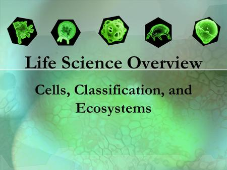 Life Science Overview Cells, Classification, and Ecosystems.