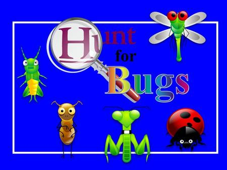BUG COLLECTING PowerPoint Review Game By Catherine Slight and Lin Pearson How to work the PowerPoint This game is made of two PowerPoint presentation.