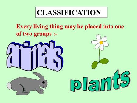 CLASSIFICATION Every living thing may be placed into one of two groups :-