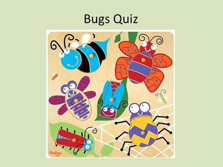 Bugs Quiz. Which bug has a Queen? Grasshopper SpiderBee Lady Bug.