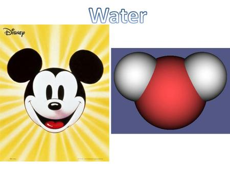 "Water Basics Polar: part of a molecule is slightly positive, while another part is slightly negative Oxygen ""hogs"" electrons from hydrogen – 8 protons:"