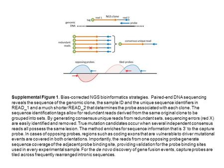 Supplemental Figure 1. Bias-corrected NGS bioinformatics strategies. Paired-end DNA sequencing reveals the sequence of the genomic clone, the sample ID.