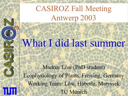 CASIROZ Fall Meeting Antwerp 2003 What I did last summer Markus Löw (PhD student) Ecophysiology of Plants, Freising, Germany Working Team: Löw, Häberle,