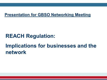 Presentation for GBSO Networking Meeting REACH Regulation: Implications for businesses and the network.