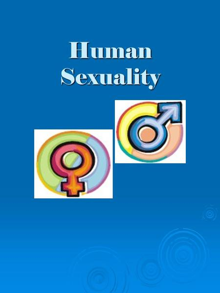 Human Sexuality. Rules for Questions  The right to pass  The right to individuality  The right to confidentiality  The right to be heard  No personal.