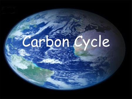 Carbon Cycle. Nutrient Cycles The constant supply of energy to Earth from the Sun replaces energy lost as it passes from link to link in a food chain.