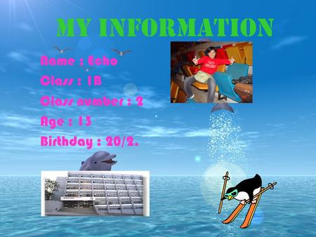 Name : Echo Class : 1B Class number : 2 Age : 13 Birthday : 20/2. My information.