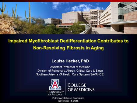 Impaired Myofibroblast Dedifferentiation Contributes to Non-Resolving Fibrosis in Aging Louise Hecker, PhD Assistant Professor of Medicine Division of.