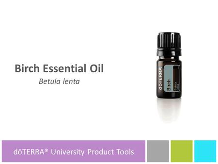 Birch Essential Oil Betula lenta dōTERRA® Product Tools dōTERRA® University Product Tools.