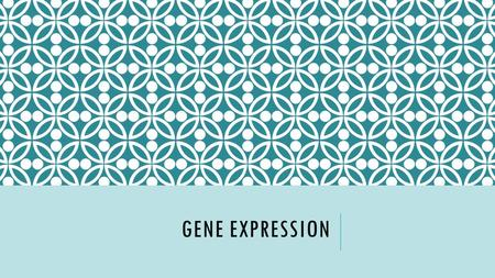 GENE EXPRESSION. Pretty Please Back doorBig Brother.