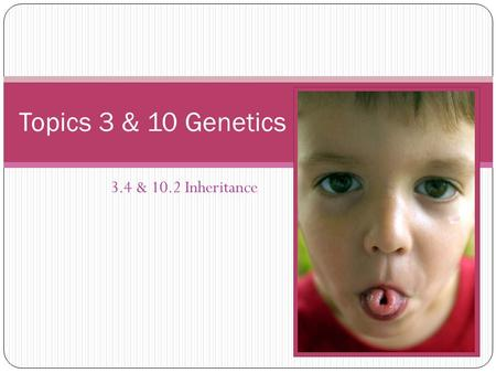 3.4 & 10.2 Inheritance Topics 3 & 10 Genetics. 1 – Understanding Genes Read & Consider Understandings 3.4.1-3.4.4 & 10.2.1-10.2.4 How many alleles of.