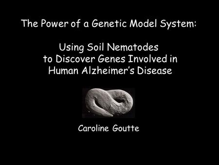 Caroline Goutte The Power of a Genetic Model System: Using Soil Nematodes to Discover Genes Involved in Human Alzheimer's Disease.