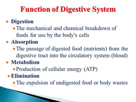 Function of Digestive System  Digestion  The mechanical and chemical breakdown of foods for use by the body's cells  Absorption  The passage of digested.