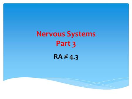 Nervous Systems Part 3 RA # 4.3. What is a synapse?  Gaps between neurons or between neurons and effectors.
