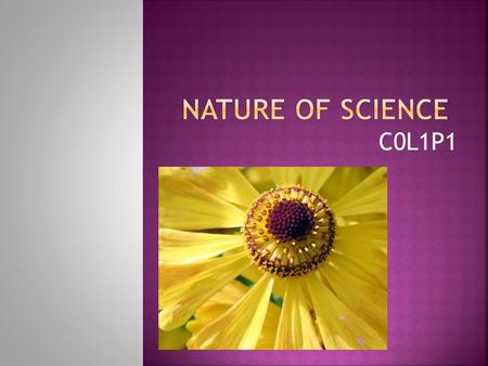 Nature of Science C0L1P1.