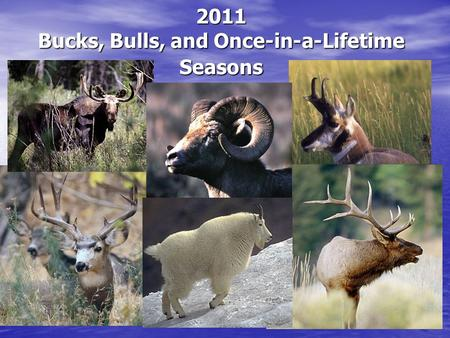 2011 Bucks, Bulls, and Once-in-a-Lifetime Seasons.