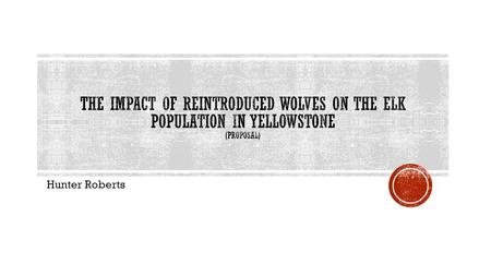 The impact of reintroduced wolves on the elk population in Yellowstone (proposal) Hunter Roberts.