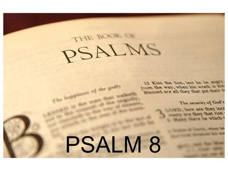 PSALM 8 PSALM 1 Martin Luther; James Boice