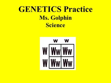 GENETICS Practice Ms. Golphin Science What is a Punnett Square? Punnett square: a diagram that is used to predict the genotypes and phenotypes of an.