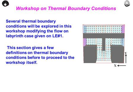 MULTLAB FEM-UNICAMP UNICAMP Workshop on Thermal Boundary Conditions Several thermal boundary conditions will be explored in this workshop modifying the.