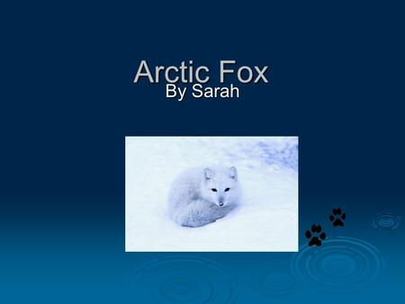 Arctic Fox By Sarah Mammal  It has a backbone.  It breaths air through its lungs.  They have lives babies.  It is warm blooded.  It has hair.