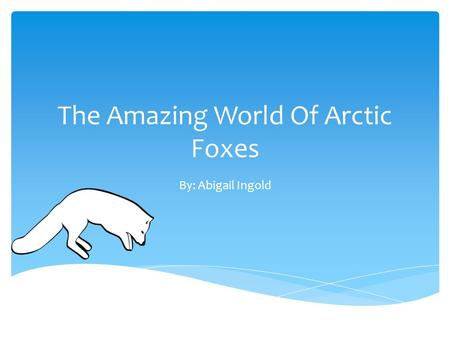 The Amazing World Of Arctic Foxes By: Abigail Ingold.
