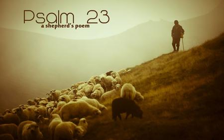 The LORD is my Shepherd, I shall not be in want He makes me lie down in green pastures.