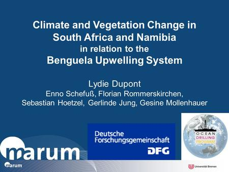 Lydie Dupont Enno Schefuß, Florian Rommerskirchen, Sebastian Hoetzel, Gerlinde Jung, Gesine Mollenhauer Climate and Vegetation Change in South Africa and.