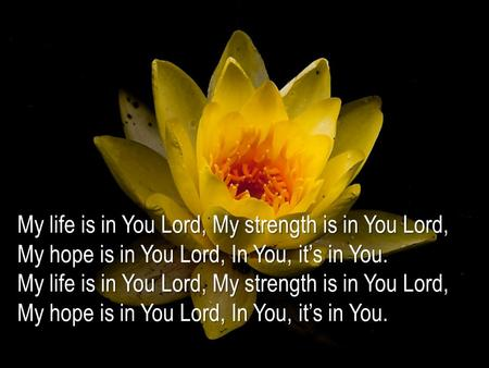 My life is in You Lord, My strength is in You Lord, My hope is in You Lord, In You, it's in You. My life is in You Lord, My strength is in You Lord, My.