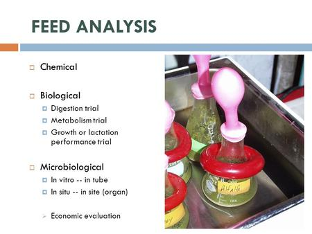 FEED ANALYSIS  Chemical  Biological  Digestion trial  Metabolism trial  Growth or lactation performance trial  Microbiological  In vitro -- in tube.