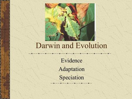Darwin and Evolution Evidence Adaptation Speciation.